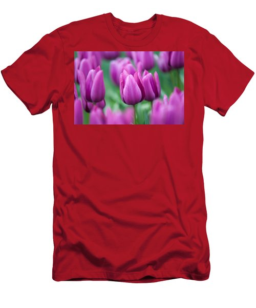 Purple Tulips Of Keukenhof Men's T-Shirt (Athletic Fit)