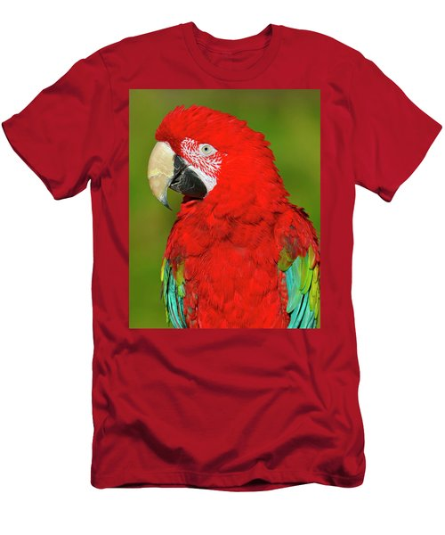 Men's T-Shirt (Slim Fit) featuring the photograph Red And Green by Tony Beck