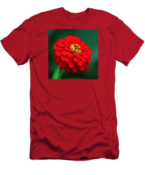Red Dahlia In Pastel Men's T-Shirt (Athletic Fit)