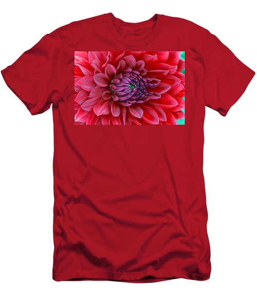 Red Dalia Up Close Men's T-Shirt (Slim Fit) by James Steele