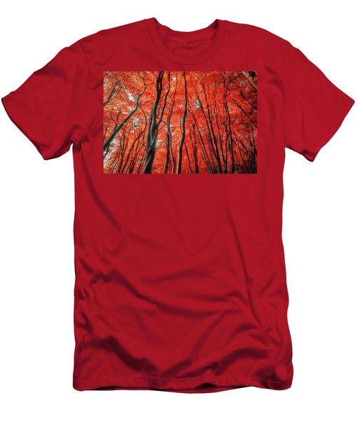 Red Forest Of Sunlight Men's T-Shirt (Athletic Fit)