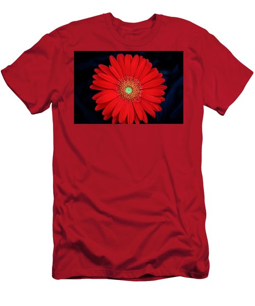 Men's T-Shirt (Athletic Fit) featuring the photograph Red Gerber Daisy On Black by Sheila Brown