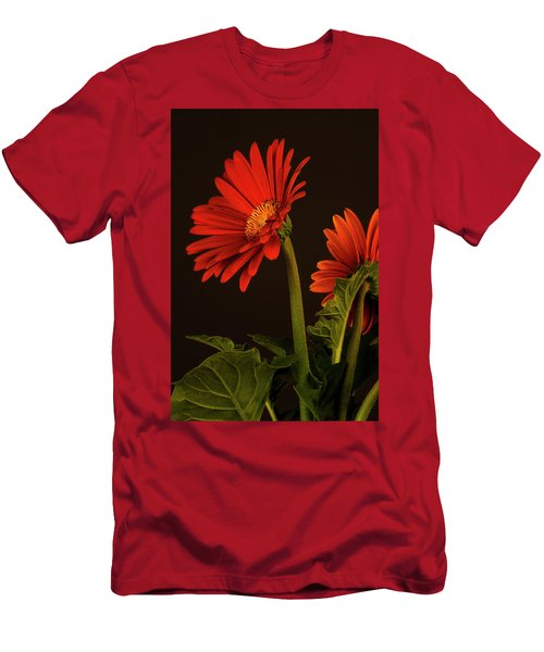 Red Gerbera Daisy 1 Men's T-Shirt (Slim Fit) by Richard Rizzo