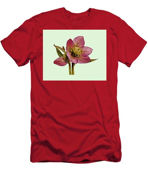 Men's T-Shirt (Slim Fit) featuring the photograph Red Hellebore Green Background by Paul Gulliver