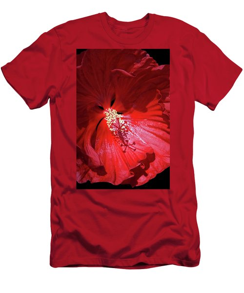 Red Hibiscus Men's T-Shirt (Slim Fit) by Judy Johnson