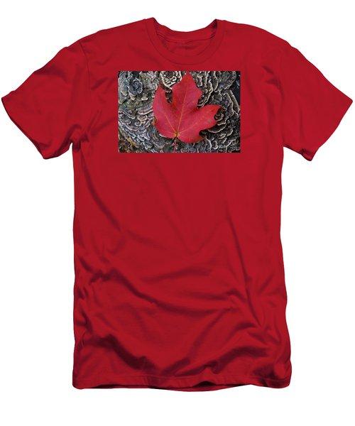 Red Leaf  Men's T-Shirt (Slim Fit) by John S