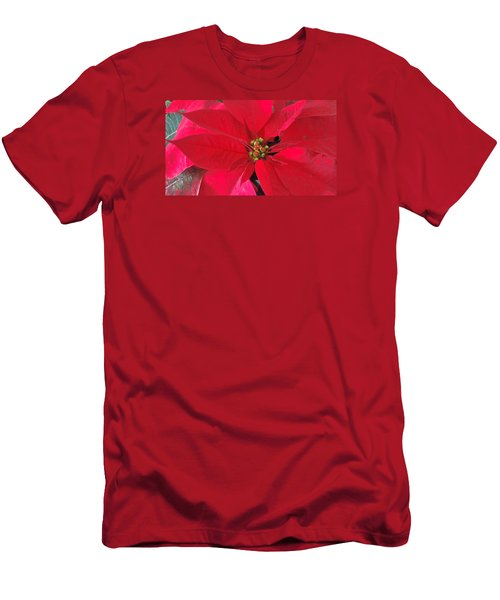 Red Poinsettia Men's T-Shirt (Athletic Fit)
