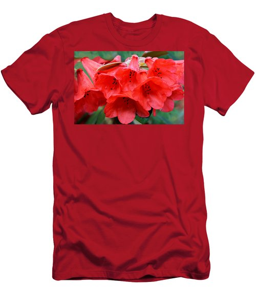 Red Trumpet Rhodies Men's T-Shirt (Athletic Fit)