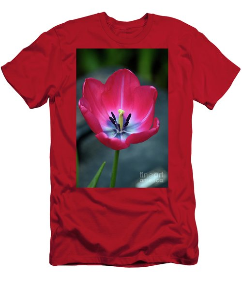 Red Tulip Blossom With Stamen And Petals And Pistil Men's T-Shirt (Athletic Fit)