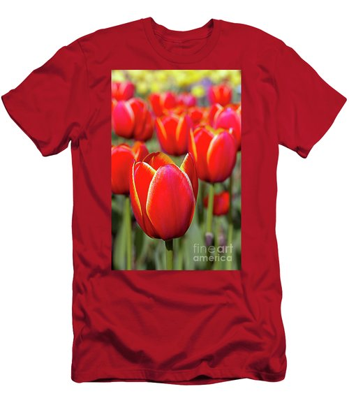 Red And Yellow Tulips I Men's T-Shirt (Athletic Fit)