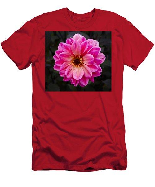 Reddish Dahlia Men's T-Shirt (Athletic Fit)