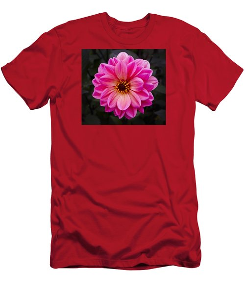 Reddish Dahlia Men's T-Shirt (Athletic Fit)
