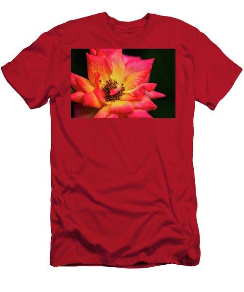Rose Corolla Men's T-Shirt (Athletic Fit)