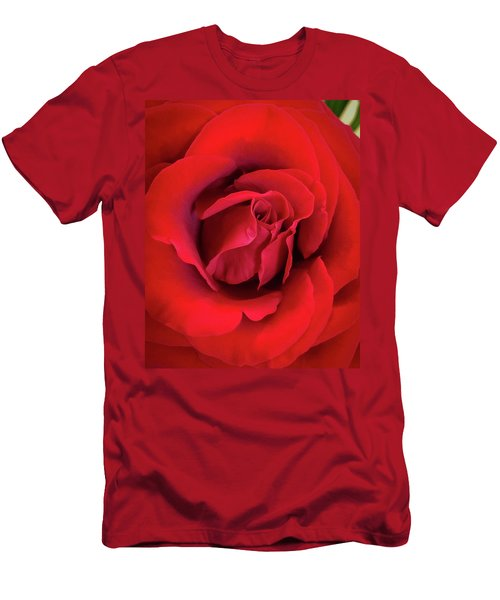 Rose Red 4 Men's T-Shirt (Athletic Fit)