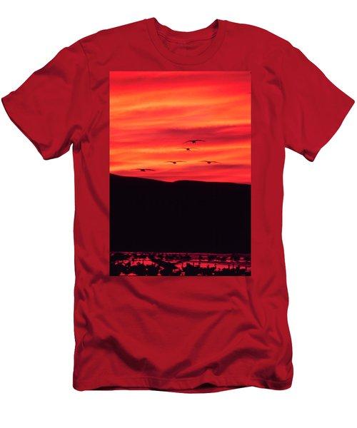 Sandhill Cranes - Bosque Del Apache - Nm Men's T-Shirt (Athletic Fit)