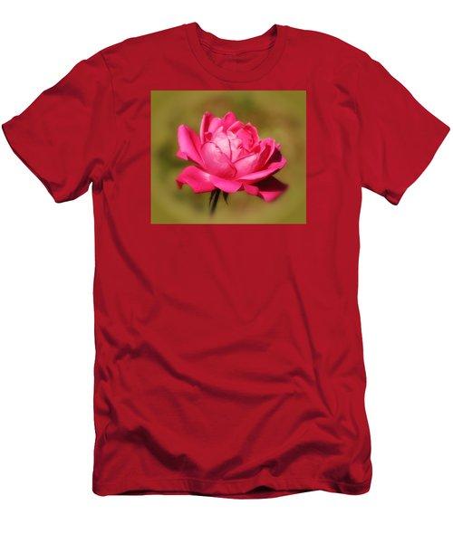 September Rose Up Close Men's T-Shirt (Slim Fit) by MTBobbins Photography