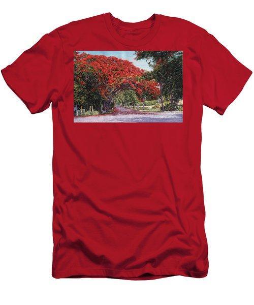 Skyline Drive Men's T-Shirt (Athletic Fit)