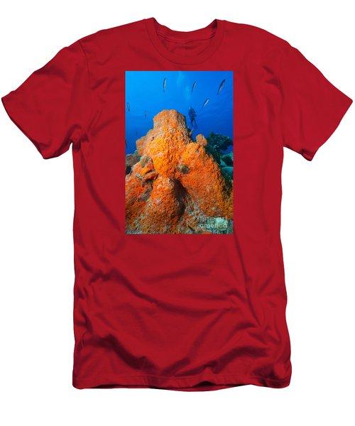 Sponge Mountain Men's T-Shirt (Athletic Fit)