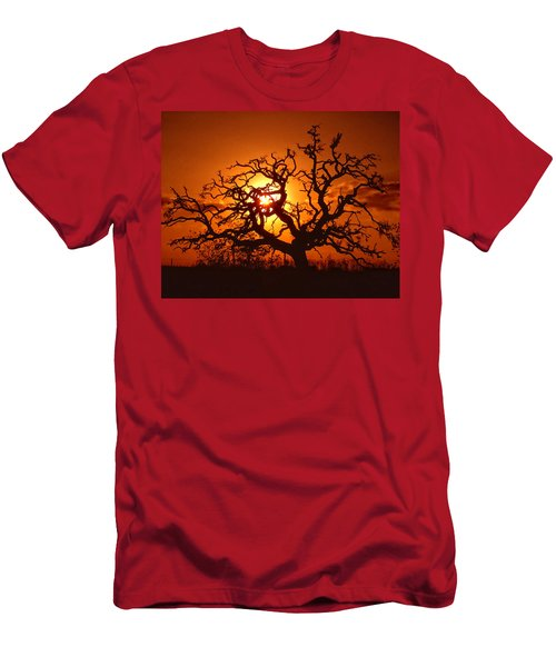 Spooky Tree Men's T-Shirt (Athletic Fit)