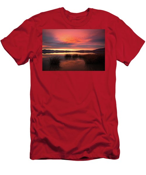 Men's T-Shirt (Athletic Fit) featuring the photograph Sunset Reeds On Utah Lake by Wesley Aston