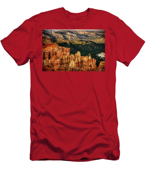 Sunsets In The Canyon Men's T-Shirt (Athletic Fit)