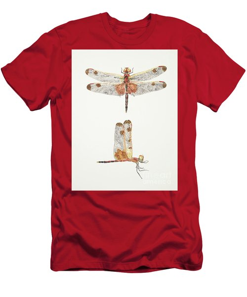 Top And Side Views Of A Male Calico Pennant Dragonfly Men's T-Shirt (Athletic Fit)