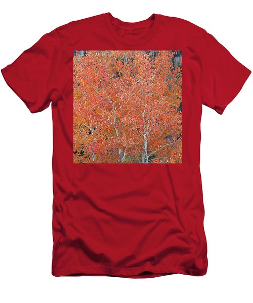 Translucent Aspen Orange Men's T-Shirt (Athletic Fit)