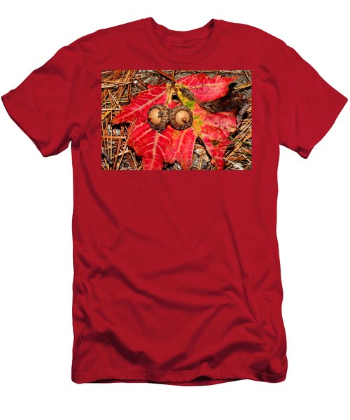 Two Acorns On Tatterd Maple Leaf Men's T-Shirt (Athletic Fit)