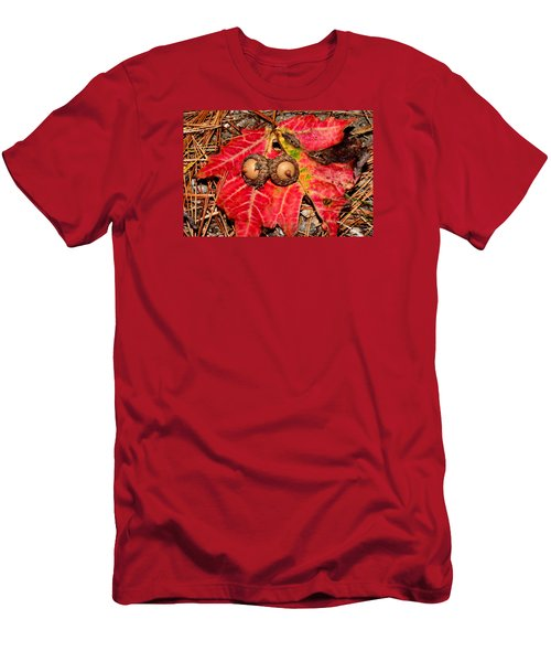 Two Acorns On Tatterd Maple Leaf Men's T-Shirt (Athletic Fit)