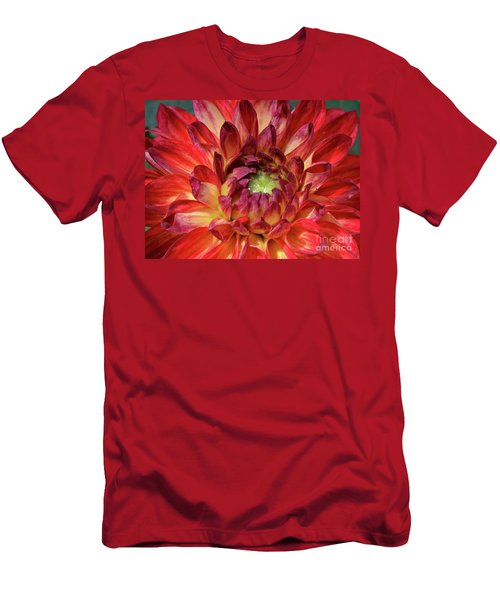 Variegated Dahlia Beauty Men's T-Shirt (Athletic Fit)