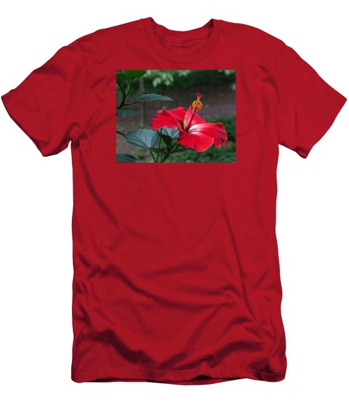 Vivid Hibiscus Men's T-Shirt (Athletic Fit)