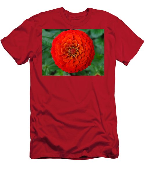 Want An Orange ? Men's T-Shirt (Athletic Fit)