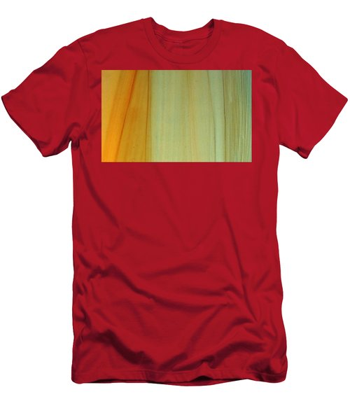 Wood Stain Men's T-Shirt (Athletic Fit)
