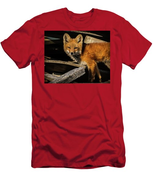 Young Fox In The Wood Men's T-Shirt (Athletic Fit)
