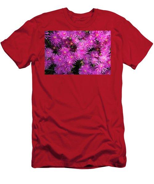 Atlanta Botanical Garden - Ice Plants Men's T-Shirt (Athletic Fit)