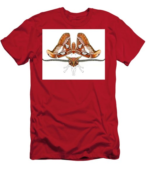 Atlas Moth4 Men's T-Shirt (Athletic Fit)