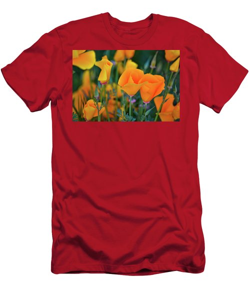 California Poppies Lake Elsinore Men's T-Shirt (Athletic Fit)