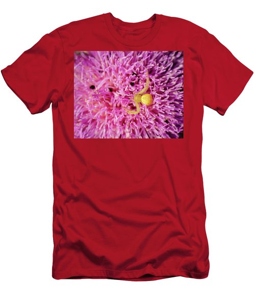 Crab Spider Men's T-Shirt (Athletic Fit)