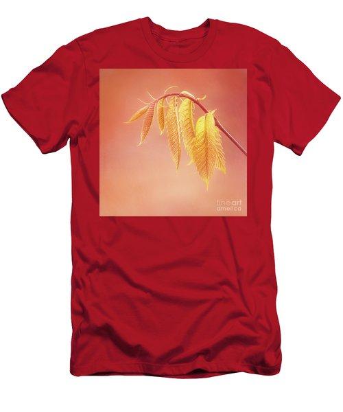 Delightful Baby Chestnut Leaves Men's T-Shirt (Athletic Fit)