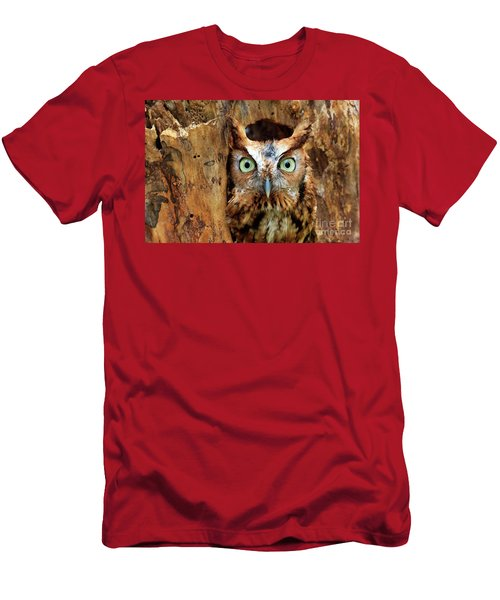 Eastern Screech Owl Perched In A Hole In A Tree Men's T-Shirt (Athletic Fit)