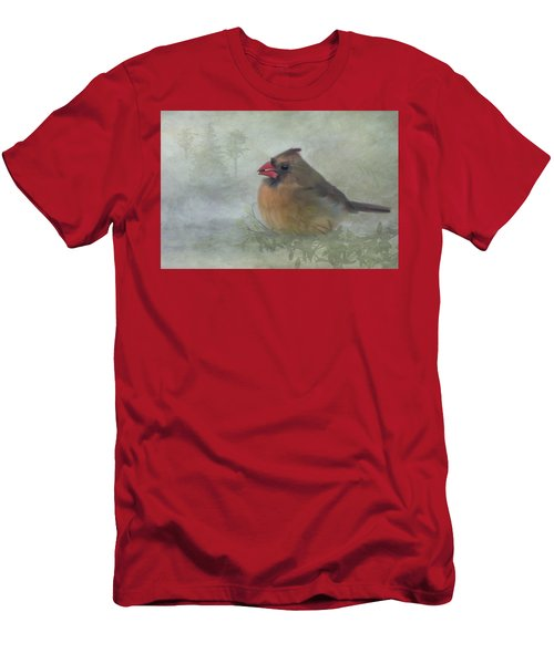 Female Cardinal With Seed Men's T-Shirt (Athletic Fit)