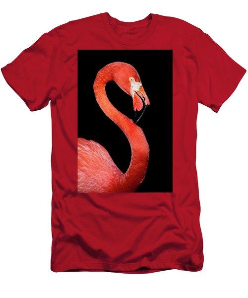 Flamingo Portrait Men's T-Shirt (Athletic Fit)