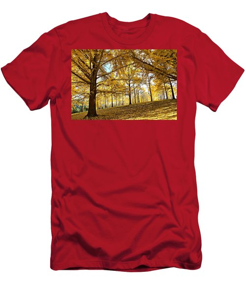 Ginkgo Grove Men's T-Shirt (Athletic Fit)