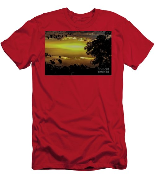 Golden Sunset On Strawberry Hill Men's T-Shirt (Athletic Fit)