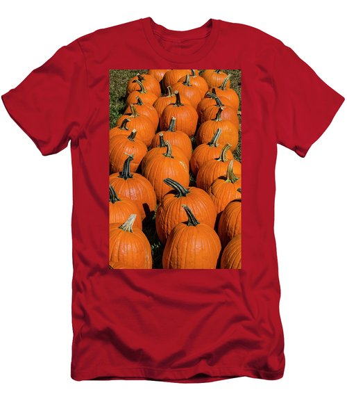 Halloween Harvest Men's T-Shirt (Athletic Fit)