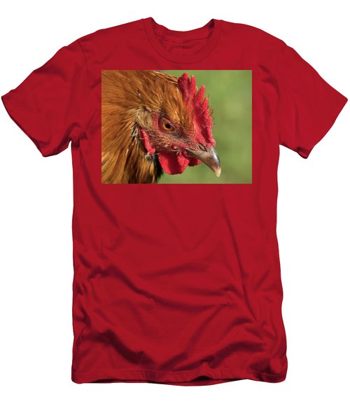 Hen Pecked Men's T-Shirt (Athletic Fit)