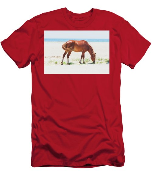 Horse On Beach Men's T-Shirt (Athletic Fit)