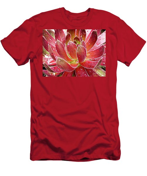 Magical Succulent Men's T-Shirt (Athletic Fit)