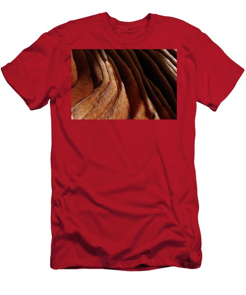 Natural Canyons Men's T-Shirt (Athletic Fit)