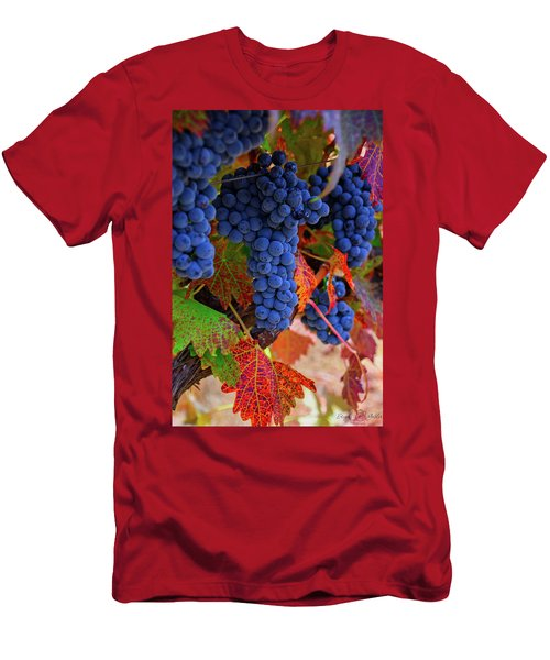 On The Vine II Men's T-Shirt (Athletic Fit)